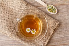 Glass cup of green tea with white chamomile flowers royalty free stock photos