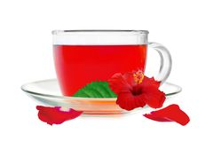 Glass cup hibiscus tea with hibiscus flower and petals isolated Royalty Free Stock Images