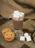 Glass cup of hot cocoa with marshmallows and cookies on a wooden brown background Stock Photos