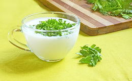 Glass cup with kefir Stock Image