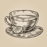 Glass cup with lemon sketch. Transparent dishes for tea and citrus. Vector illustration in style of engraving Royalty Free Stock Image