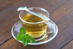Glass cup of mint tea Stock Images