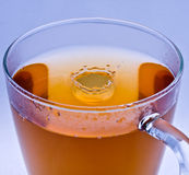Glass cup of tea Royalty Free Stock Image