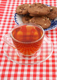 Glass cup of  tea and chocolate cookies Stock Photography
