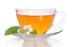Glass cup of tea with jasmine Stock Photos