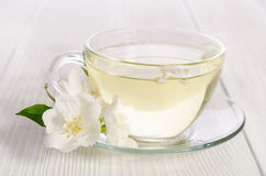 Glass cup of tea with jasmine Royalty Free Stock Images