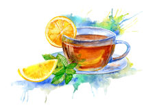 Glass cup of tea with lemon and mint leaves. Drink painting.Watercolor hand drawn illustration Royalty Free Stock Images
