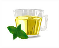 Glass cup of tea with mint Stock Images