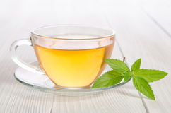 Glass cup of tea with mint Royalty Free Stock Photos