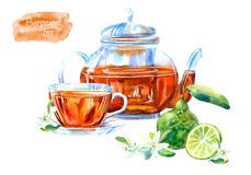 Glass cup and teapot of a bergamot tea. Hot drink image. Watercolor hand drawn illustration Royalty Free Stock Image