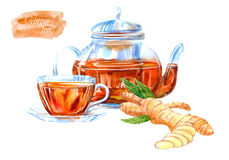 Glass cup and teapot of a ginger tea. Hot drink image. Watercolor hand drawn illustration Royalty Free Stock Images