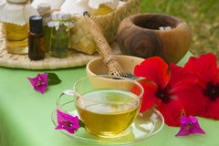 A glass cup of tisane Royalty Free Stock Photos
