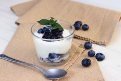 Glass cup of yogurt with blueberries Stock Photos