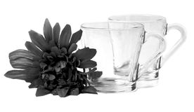 Glass cups. Beautiful shot of glass cups on white background Stock Photo