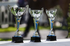 Glass cups for the winners Stock Photography