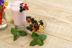 Glass of currant yogurt  with fresh red, black and white berries. Glass of delicious currant yogurt with fresh red, black and white berries in a bowl and leaves Stock Photo