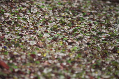 Glass cut rock pebble flowerbed art. Flowerbed or sidewalk made from glass bits Royalty Free Stock Photos