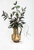 Plant in a vase. Glass decanter with green branches of a tree Stock Image
