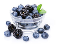 Glass of delicious blueberries and blackberries. Royalty Free Stock Images
