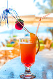 Glass of delicious fruit cocktail Stock Photography