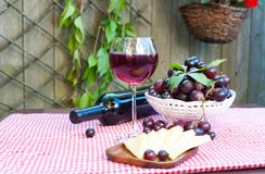 Glass of delicious homemade dry red wine with grapes. Glass of delicious homemade dry red wine with bottle, some grapes and cheese. Outdoors still-life Royalty Free Stock Photo