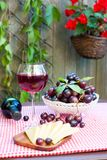 Glass of delicious homemade dry red wine with grapes. And cheese. Outdoors still-life. Vertical summertime colored image Royalty Free Stock Photography