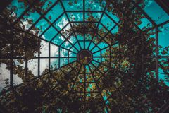 Glass dome covered with leaves, viewed from below stock images