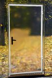 A glass door and yellow leaves on the ground. A door into autumn stock photo