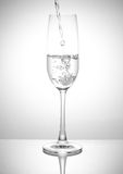 A Glass of drinks. Wine glass of drink Royalty Free Stock Photo