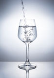A Glass of drinks. Wine glass of drink Stock Image