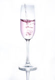 A Glass of drinks. Wine glass of drink Stock Photography
