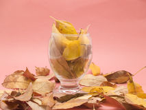 Glass with dry leaves Royalty Free Stock Photography