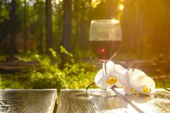 Glass of dry red wine on a wooden background, among nature, blue sky and green vegetation. A glass of dry red wine on a wooden background, among nature, blue sky royalty free stock photography
