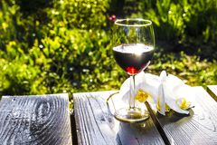 Glass of dry red wine on a wooden background, among nature, blue sky and green vegetation. A glass of dry red wine on a wooden background, among nature, blue sky stock image