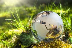 Glass earth on gras royalty free stock image