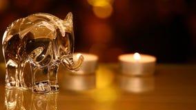 Glass elefantdiagram guld- bokehreflexion för vax stock video