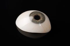 Free Glass Eye Prosthetic Or Ocular Prosthesis On Black Royalty Free Stock Photo - 89404765