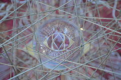 Glass Eye Reflection Royalty Free Stock Photography