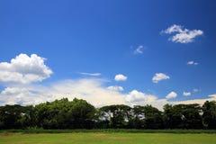 Glass fält med blå himmel och molnet Arkivbild
