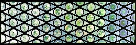 Glass fönster med cirklar och trianglar i gräsplan- och blåtttoner Arkivbilder