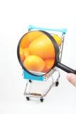 glass förstorande trolley Fotografering för Bildbyråer