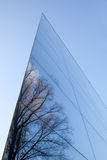 Glass facade and reflection of trees Royalty Free Stock Photo