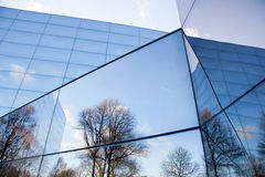 Glass facades of modern office building and reflection of trees. Glass facade of modern office building with reflections of trees and blue sky Stock Photos