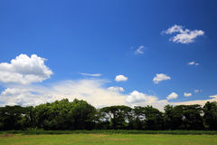 Glass field with blue sky and cloud Stock Photography