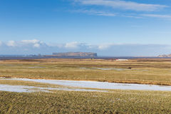 Glass field during winter with clear blue sky country side Stock Images