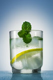The glass is filled with a refreshing drink with ice cubes and decorated mint leaves. The glass is filled with a refreshing drink with ice bits and adorned mint Royalty Free Stock Photo