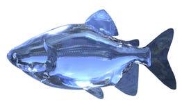 glass fisk för illustration som 3d isoleras på vit bakgrund Arkivfoton
