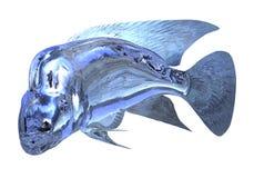 glass fisk för illustration som 3d isoleras på vit bakgrund Royaltyfri Bild