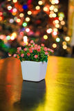 Glass flower and night Bokeh. Shot of a shot glass flower  and a lime Stock Image