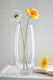 Glass flower vase Stock Photo